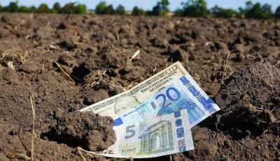 Дороже польской: в МинАПК озвучили цену за гектар в Украине после открытия рынка земли