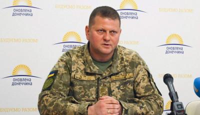 Вступление Украины в НАТО полностью зависит от Альянса – Залужный