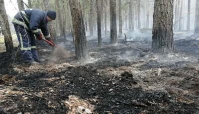 Продукти горіння із Зони відчуження не могли потрапити до Києва – директор Укргідрометцентру