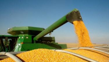 Україна експортувала вже 17,8 мільйона тонн зерна