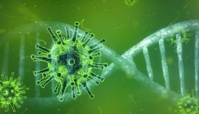 В Израиле заявили о прорыве в создании вакцины от COVID-19