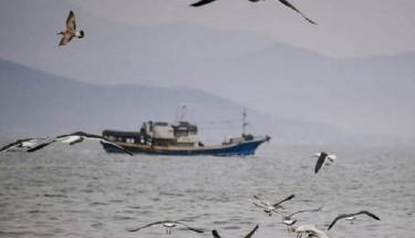 Россия заявила о задержании украинских рыбаков в Черном море